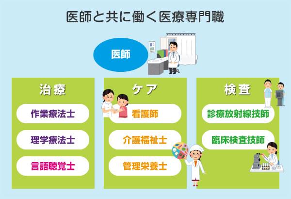 医師と共に働く医療専門職